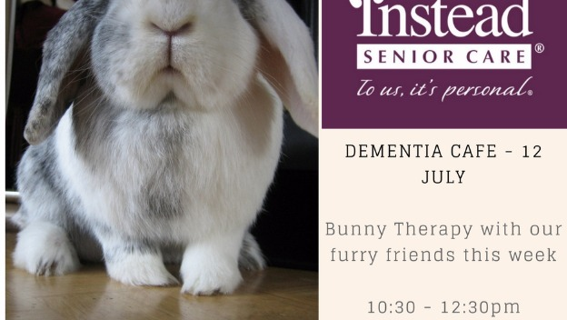 Bunny Therapy - Dementia Cafe